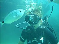 Plongée en Corse - Sites de baptêmes